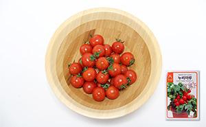 누리마루 토마토 씨앗 (20립)