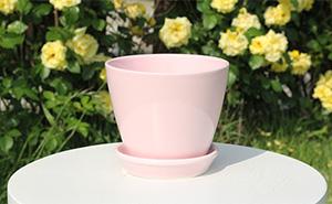 컬러풀 모던팟 C (핑크) - 품절