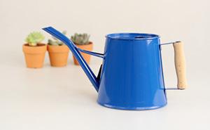 가든갤러리 소형 물뿌리개 (그린,레드,블루)