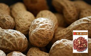 재래종 땅콩 씨앗 (30g)