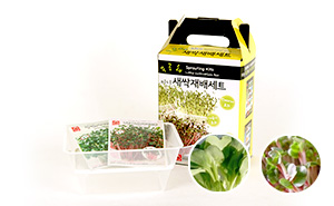 미니새싹재배세트(씨앗2종)